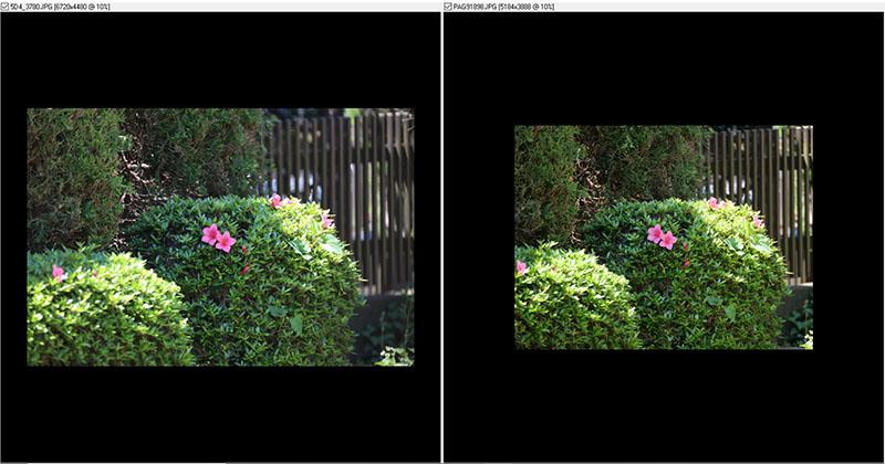 EF_LEICA_2.jpg