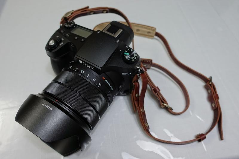 RX504045.jpg